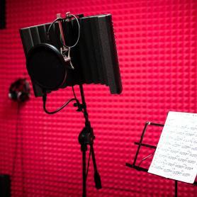 Микрофоны Neumann TLM 102, Октава МЛ-16, Shure KSM44, Yamaha Subkick, Audix D6, Shure SM57Beta, Shure SM57, Audio Technica ATM 510 и др