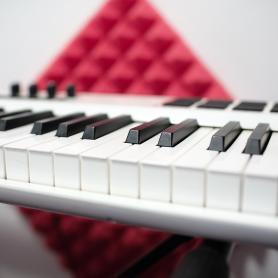 Сэмплер Roland SPD-SX, перкуссионный синтезатор Korg Wavedrum и триггеры Ddrum для внедрения MIDI-элементов и электронных звуков в музыкальную партию